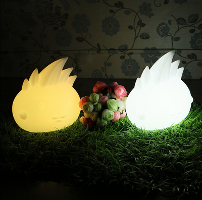 colors change PE LED Decorative Light